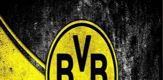 Germanii de la Borussia Dortmund transforma stadionul intr-un centru de tratare a coronavirusului